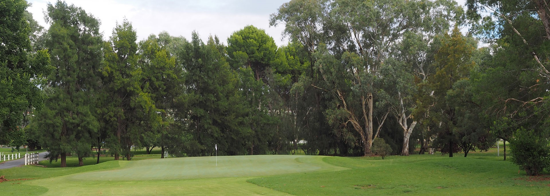 Beautiful fairways_Wagga Wagga Country Club